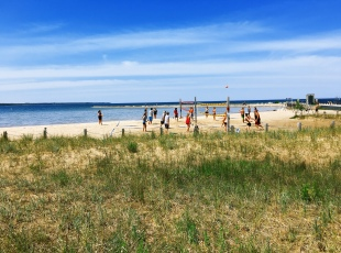 Port Elgin & Saugeen Township Beacher's Association