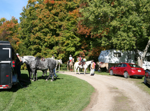Horse Camping at Saugeen Bluffs