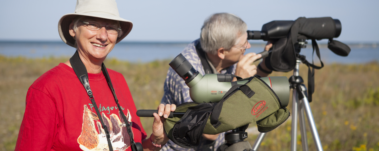 Birding Port Elgin